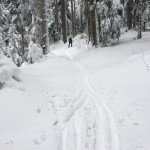Skitour Rossfeld - Bayern